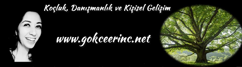 www.gokceerinc.net